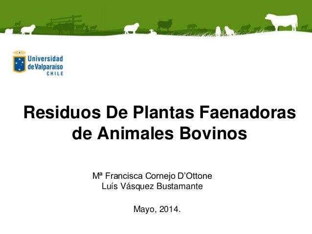 Residuos De Plantas Faenadoras de Animales Bovinos Mª Francisca Cornejo D'Ottone Luís Vásquez Bustamante Mayo, 2014.