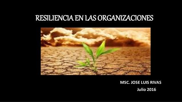 RESILIENCIA EN LAS ORGANIZACIONES MSC. JOSE LUIS RIVAS Julio 2016