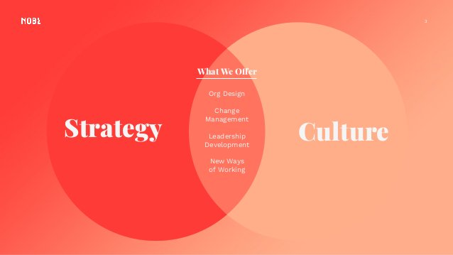 3 Strategy Culture Org Design Change Management Leadership Development New Ways of Working What We Offer