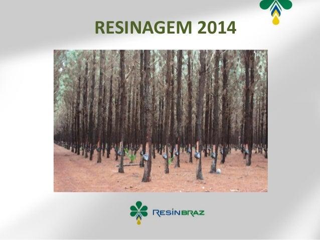 RESINAGEM 2014