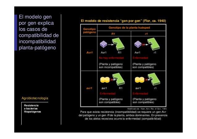 Resistencia a bacterias fitopatogenas for Incompatibilidad en plantas