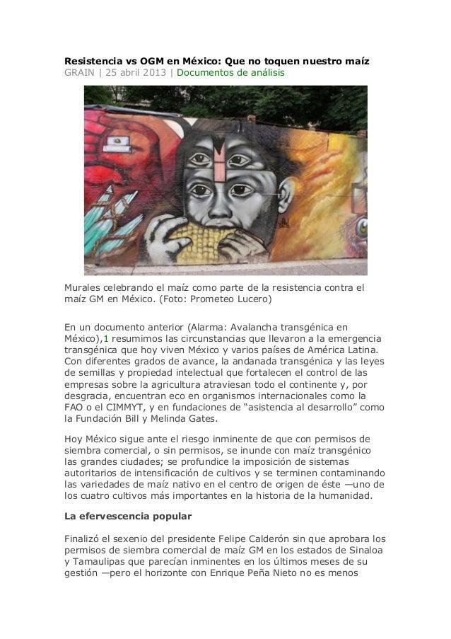 Resistencia vs OGM en México: Que no toquen nuestro maízGRAIN | 25 abril 2013 | Documentos de análisisMurales celebrando e...