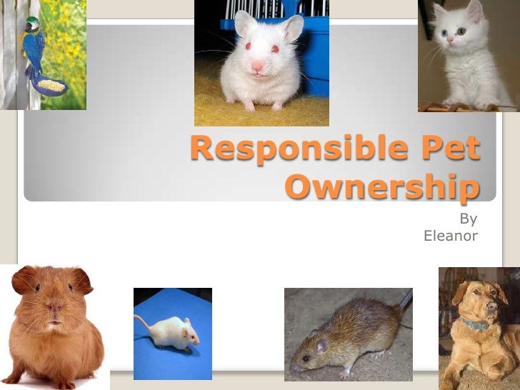Responsible Pet Ownership<br />By<br />Eleanor<br />