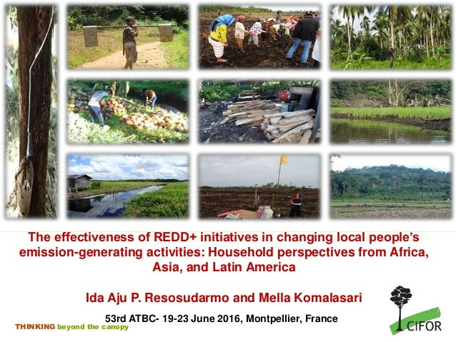 THINKING beyond the canopy The effectiveness of REDD+ initiatives in changing local people's emission-generating activitie...