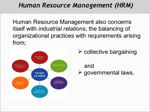 Best Online Schools for Human Resource Management (HRM ...