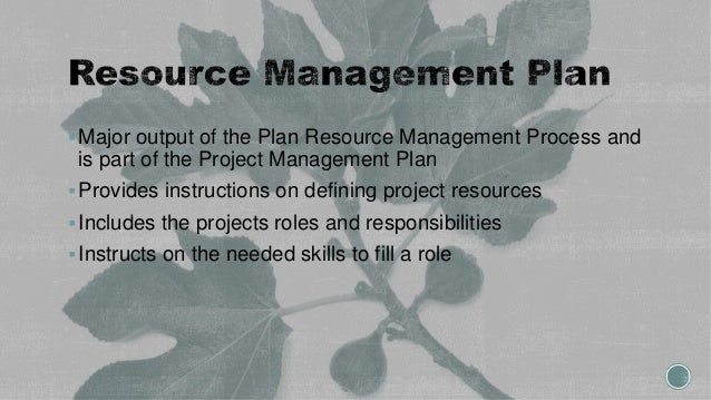 Major output of the Plan Resource Management Process and is part of the Project Management Plan Provides instructions on...