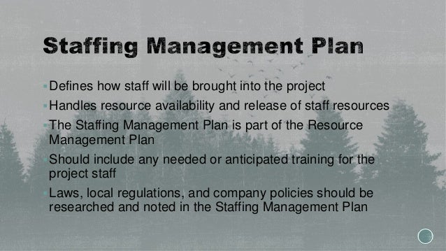 Defines how staff will be brought into the project Handles resource availability and release of staff resources The Sta...