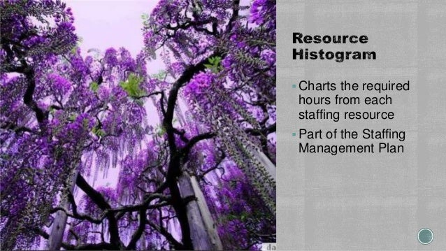 Charts the required hours from each staffing resource Part of the Staffing Management Plan