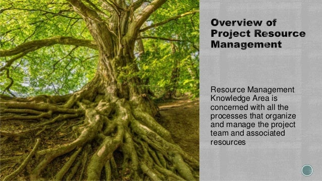 Resource Management Knowledge Area is concerned with all the processes that organize and manage the project team and assoc...
