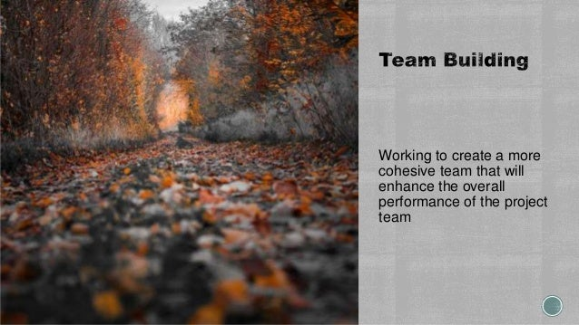 Working to create a more cohesive team that will enhance the overall performance of the project team