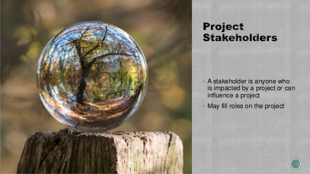  A stakeholder is anyone who is impacted by a project or can influence a project  May fill roles on the project