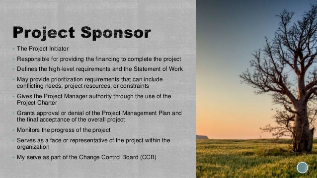  The Project Initiator  Responsible for providing the financing to complete the project  Defines the high-level require...