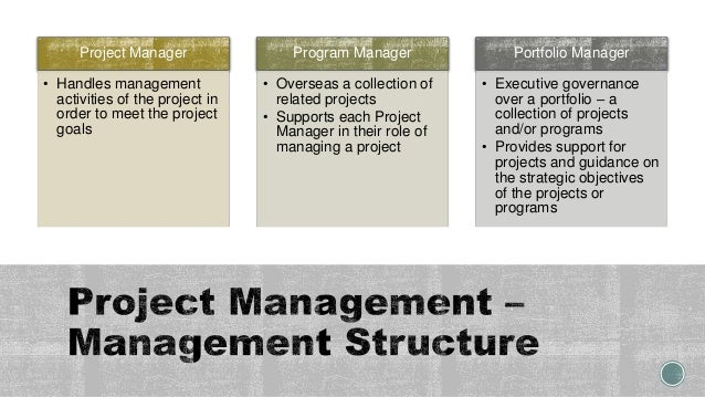 Project Manager • Handles management activities of the project in order to meet the project goals Program Manager • Overse...