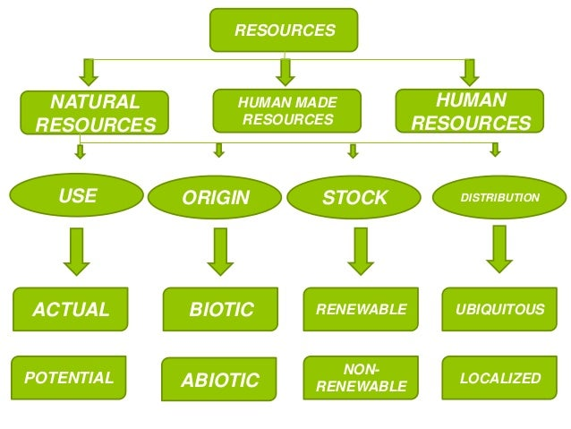 Which Product Is Often Derived From The Natural Environment