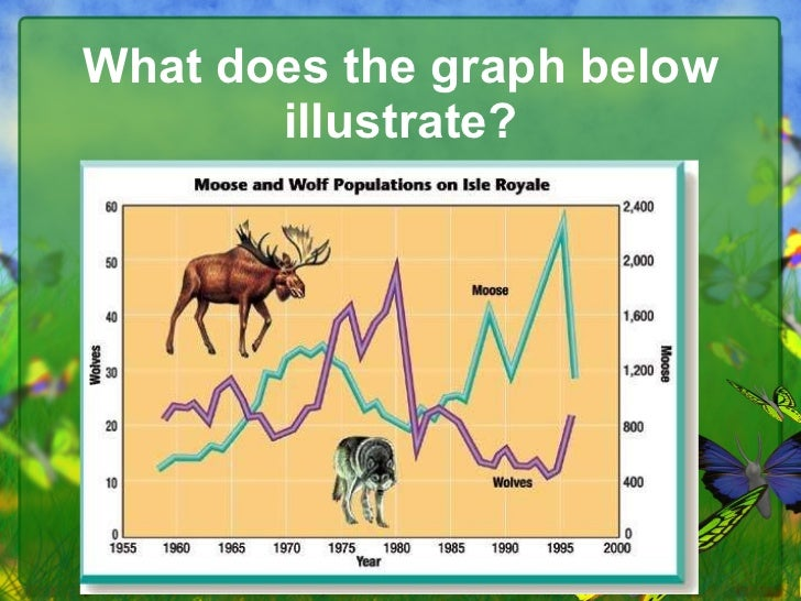 What does the graph below illustrate?