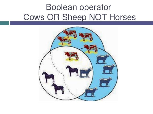 Boolean operator Cows OR Sheep NOT Horses