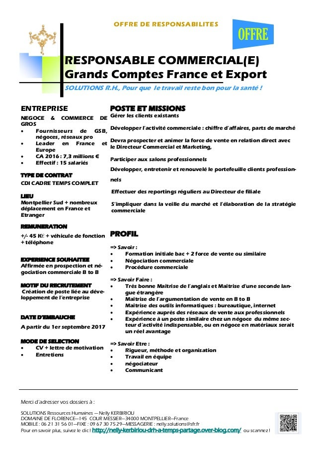 responsable commercial e  grands comptes france et export