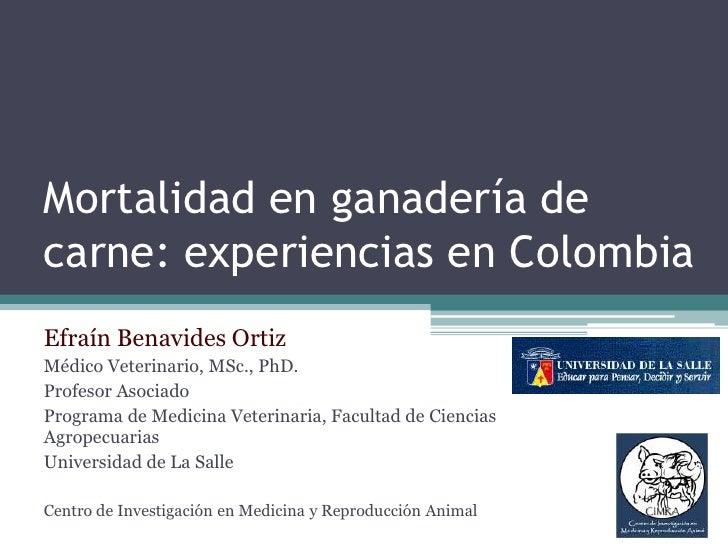 Mortalidad en ganadería de carne: experiencias en Colombia<br />Efraín Benavides Ortiz<br />Médico Veterinario, MSc., PhD....