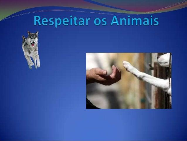  Os animais têm direito a serem amados.  Os animais têm direito a não serem mal tratados.  Os animais têm direito a uma...