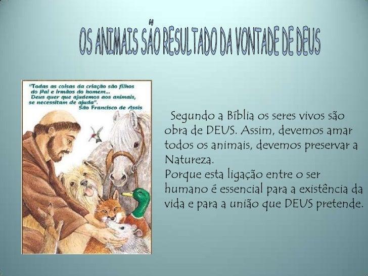 OS ANIMAIS SÃO RESULTADO DA VONTADE DE DEUS<br />  Segundo a Bíblia os seres vivos são obra de DEUS. Assim, devemos amar t...