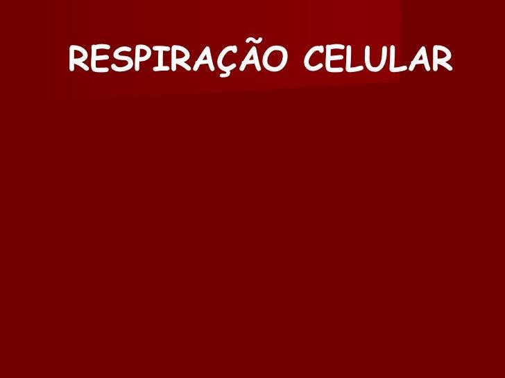 RESPIRAÇÃO CELULAR