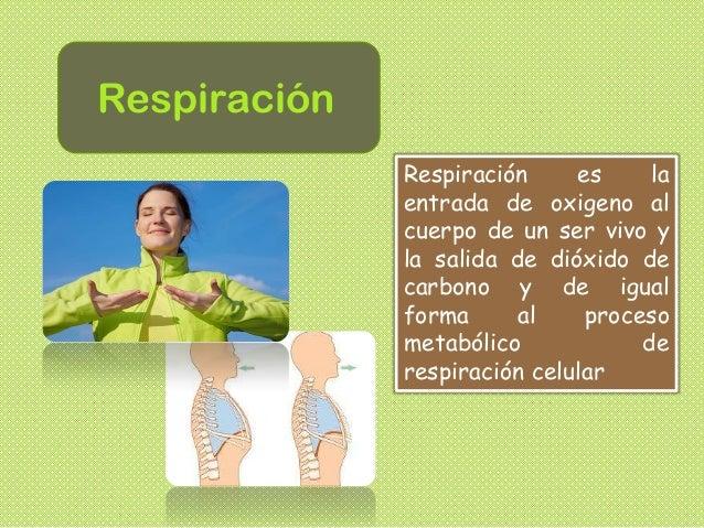 Respiración Respiración es la entrada de oxigeno al cuerpo de un ser vivo y la salida de dióxido de carbono y de igual for...