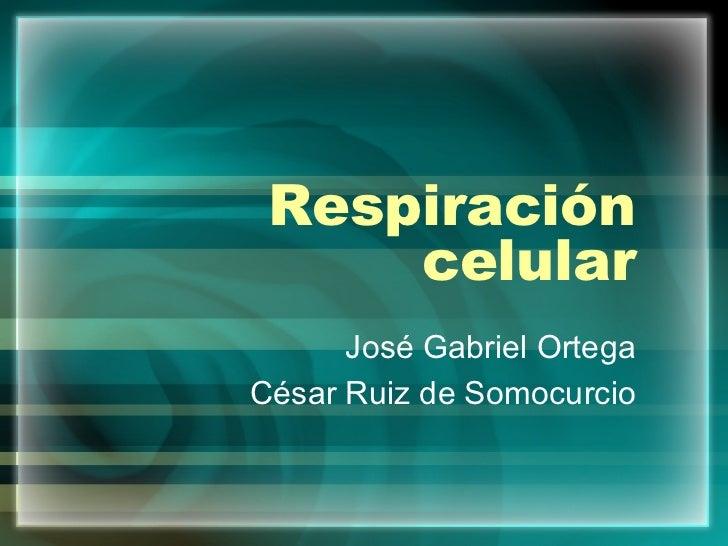 Respiración celular José Gabriel Ortega César Ruiz de Somocurcio
