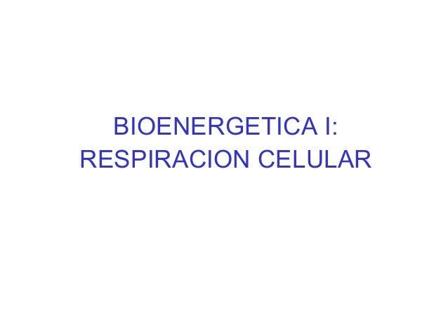 BIOENERGETICA I: RESPIRACION CELULAR