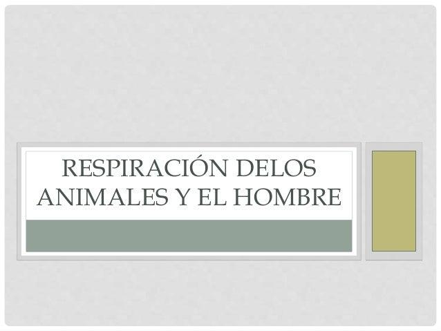 RESPIRACIÓN DELOS ANIMALES Y EL HOMBRE