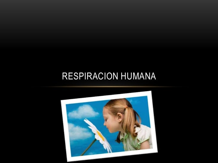 RESPIRACION HUMANA