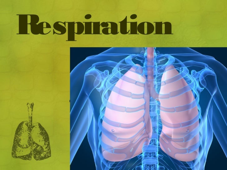 Respiration   Click to edit Master subtitle style