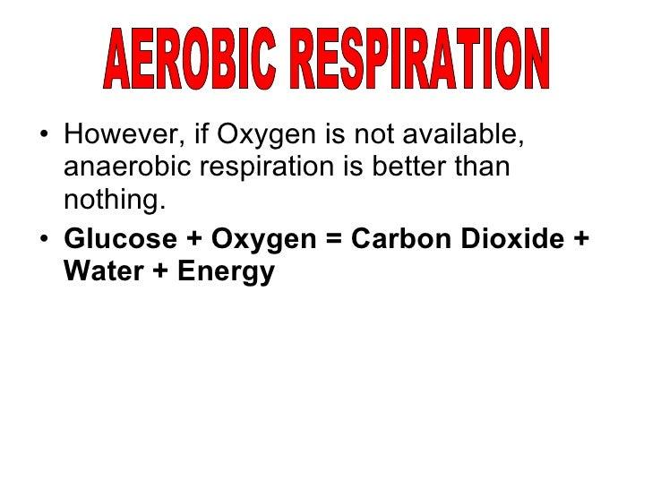 respiration anaerobic aerobic waste oxygen toxic produces