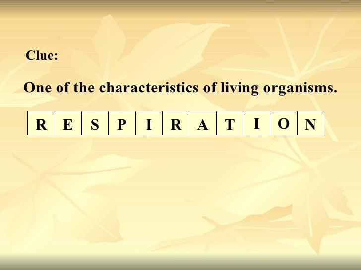 One of the characteristics of living organisms. Clue: O N E S P I R A T I R