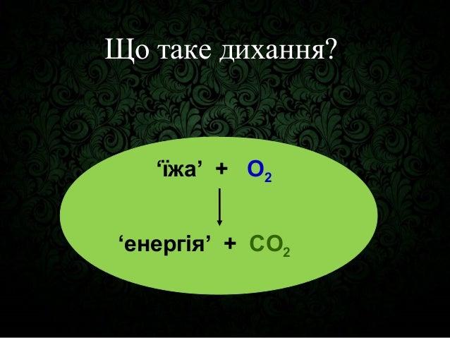 Molecular physiology of respiration Slide 2
