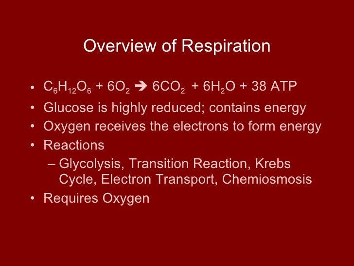 Overview of Respiration <ul><li>C 6 H 12 O 6  + 6O 2     6CO 2   + 6H 2 O + 38 ATP </li></ul><ul><li>Glucose is highly re...