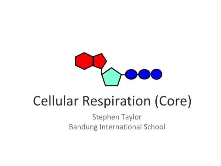 Respiration (Core)