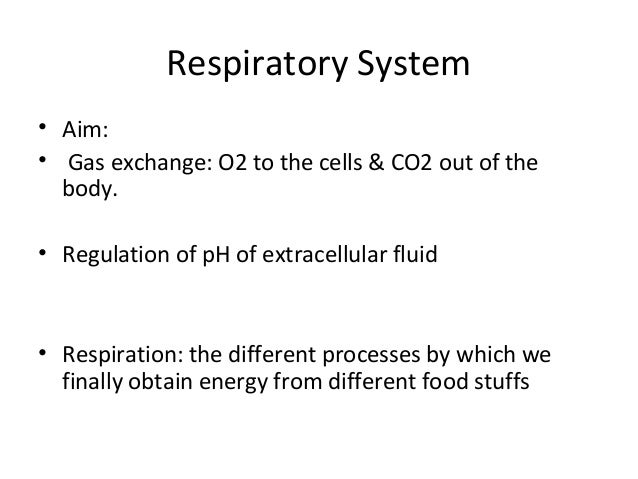Respiratory System • Aim: • Gas exchange: O2 to the cells & CO2 out of the body. • Regulation of pH of extracellular fluid...