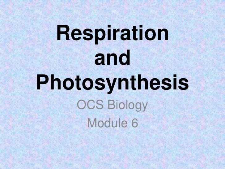 Respirationand Photosynthesis<br />OCS Biology<br />Module 6<br />