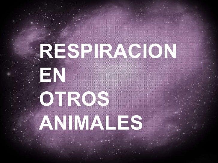 RESPIRACION EN OTROS  ANIMALES