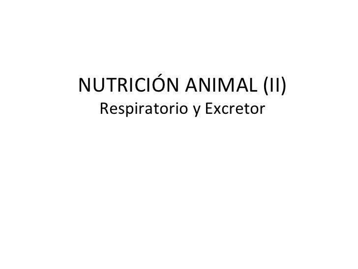 NUTRICIÓN ANIMAL (II)  Respiratorio y Excretor