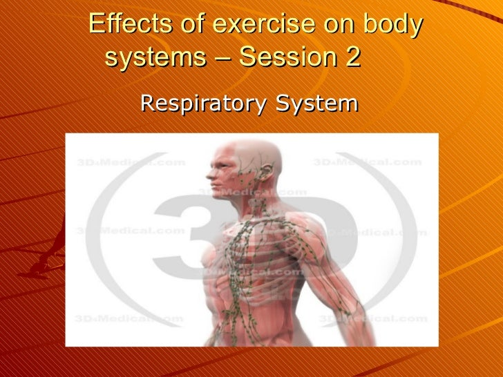 Effects of exercise on body systems – Session 2 Respiratory System