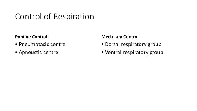 Control of Respiration Pontine Controll • Pneumotaxic centre • Apneustic centre Medullary Control • Dorsal respiratory gro...