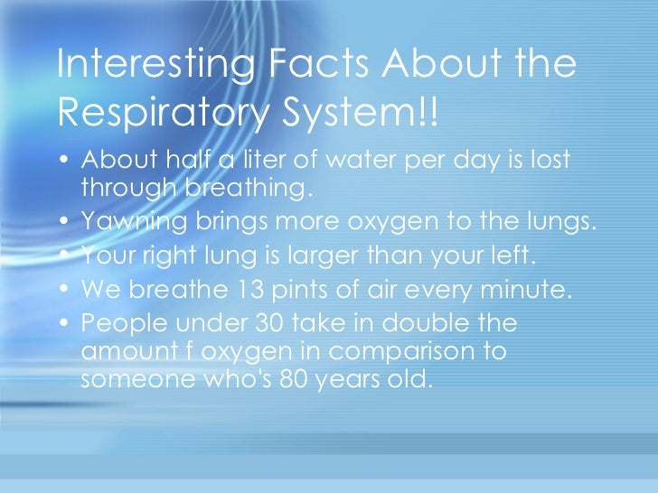 Interesting Facts About The Respiratory System For Kids