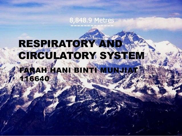RESPIRATORY AND CIRCULATORY SYSTEM FARAH HANI BINTI MUNJIAT 116640
