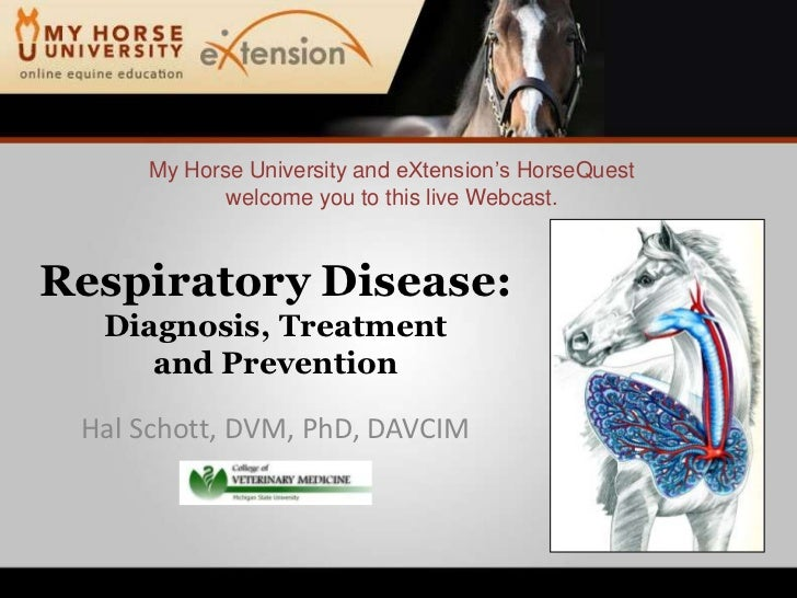 Respiratory Disease: Diagnosis, Treatment and Prevention (Schott)