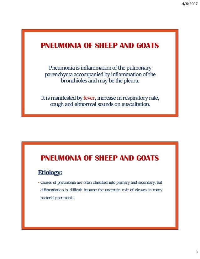 Respiratory diseases of sheep and goats