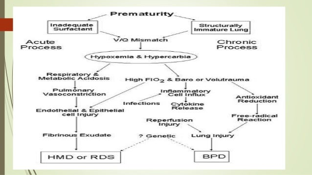 pbl preterm delivery and rds Delivery room cpap delivery room continuous positive airway pressure/positive end-expiratory pressure in extremely low birth pbl preterm delivery and rds essay.