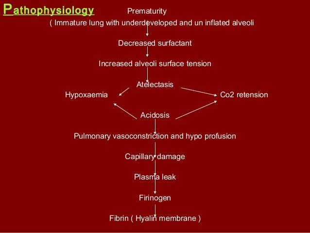 Investigation Antenatal period Examination of the amniotic fluid Lecithin sphingomyelin ratio ; -> ...