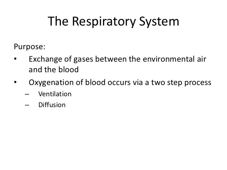 an introduction to respiratory gases Supervision of practicing respiratory therapists in real-world settings introduction to respiratory therapy medical gases / aerosol and.