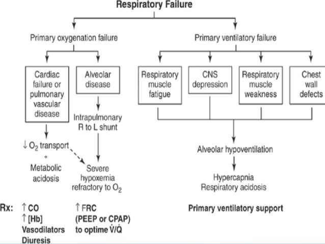 38 DEAD SPACE Means – Wasted Ventilation Dead Space estimated as ratio Vd/Vt Dead space expressed as a fraction of total t...